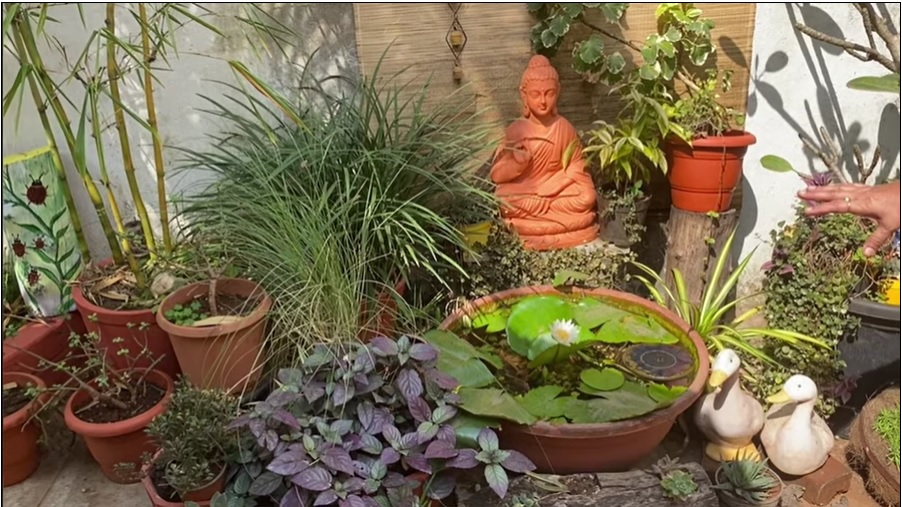 Garden decorated from waste video