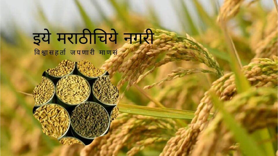 Conservation of Traditional Paddy Variety in Sidhagiri Math KVK Kaneri