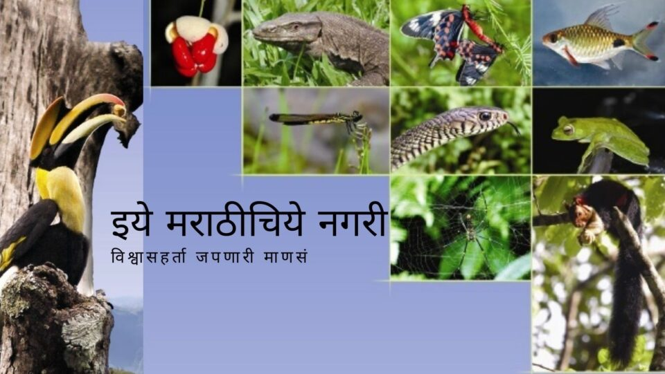 world-environment-day Madhavrao Gadgil Committee report and Todays Konkan