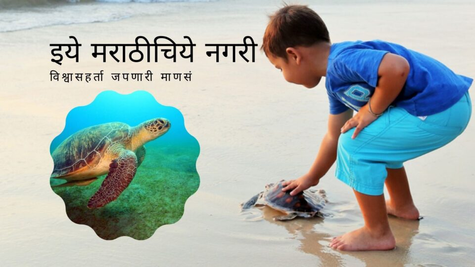 The need for coastal conservation on the occasion of turtles