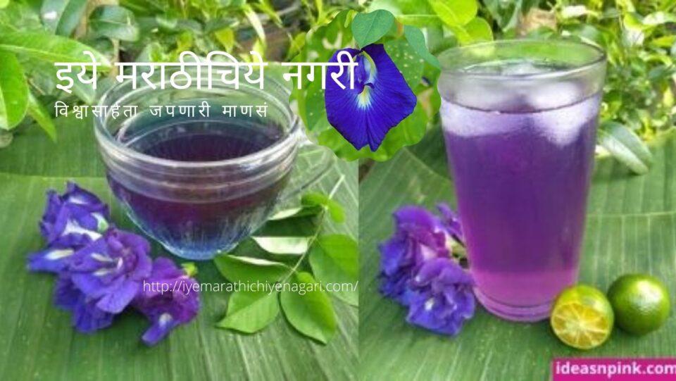 Benefits of Butterfly pea Gokarana Flower and Tea