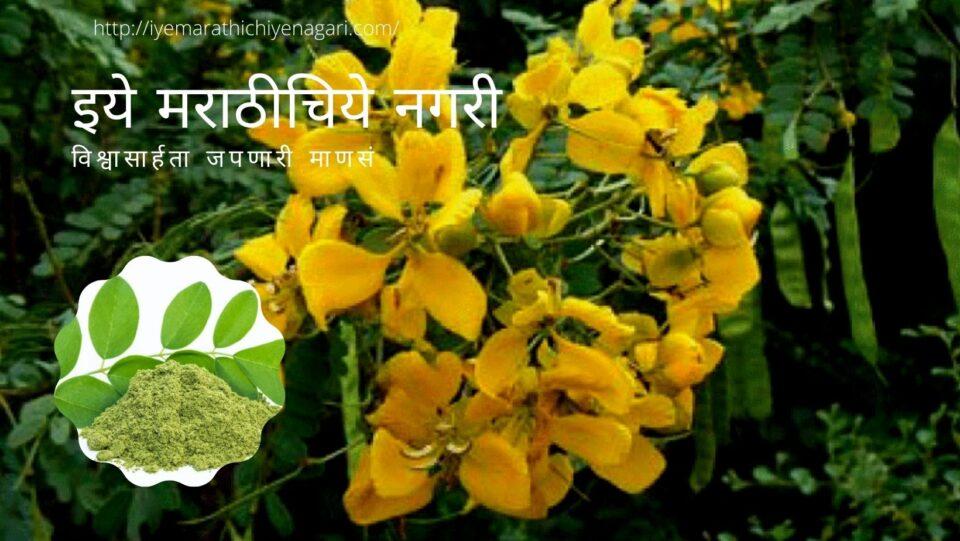 Sonamukhi Medicinal Plant