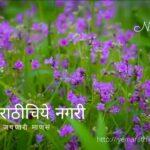 Navratri Theme Bio Diversity in Violet Colour by Pratik More