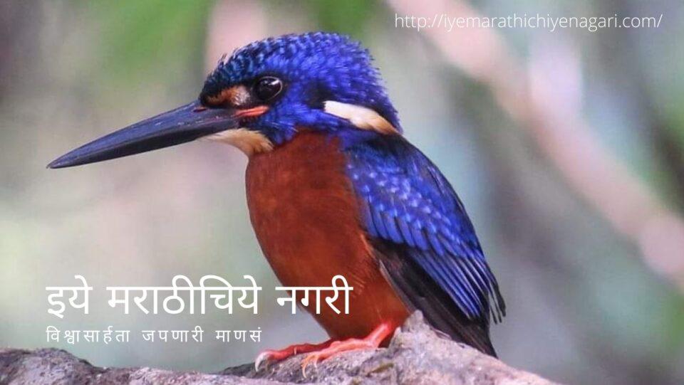 navratri-theme-biodiversity-in-red-color-by-pratik-more